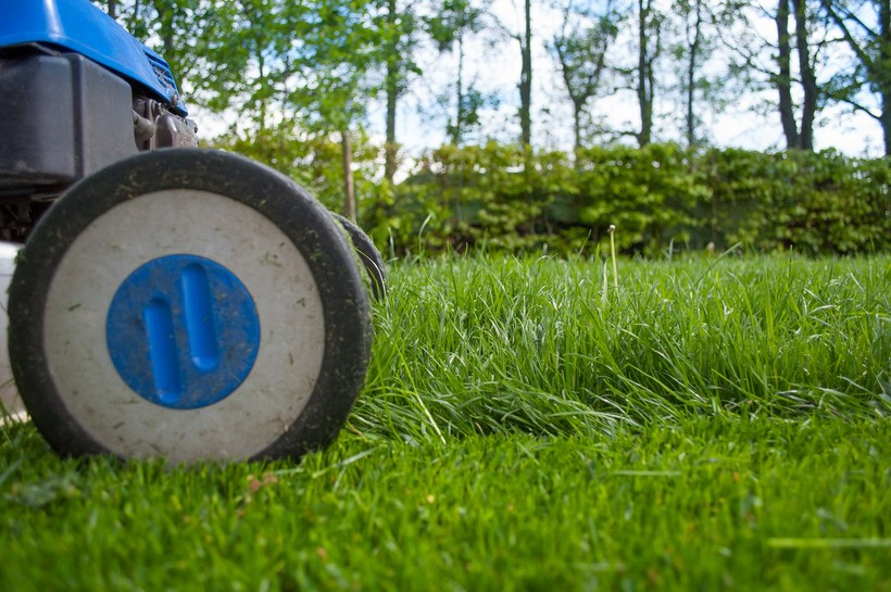 mower on lawn