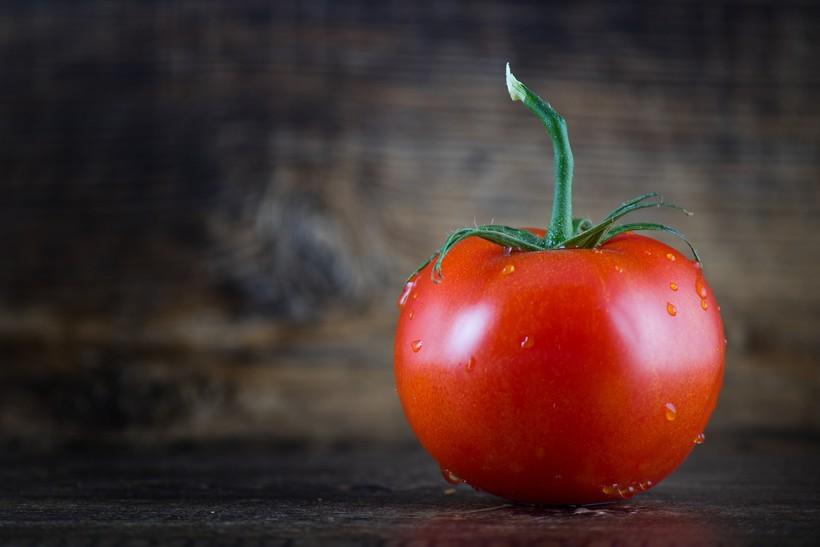 close up of tomato