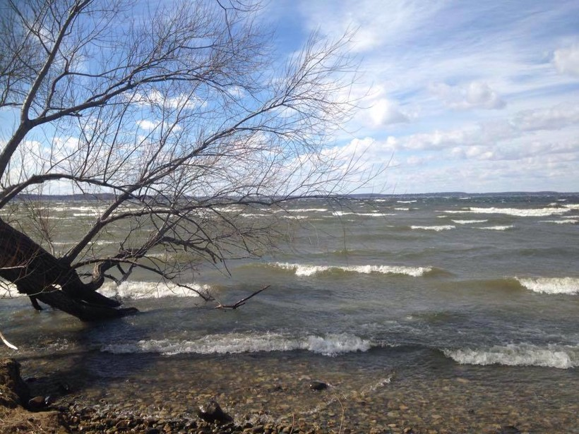 Wavey lakefront