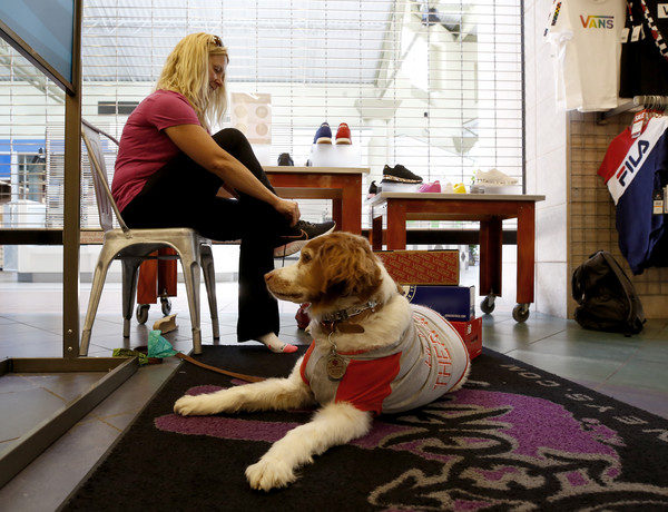 Jamie Riggs is accompanied by her dog, Sadie, as she tries on shoes at Journey's shoe store
