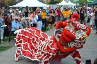 Wisconsin International Ginseng Festival