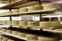 Cheese wheels displayed on shelves