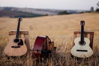 Guitars and bass in a field