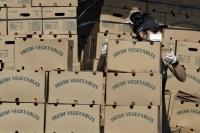 A volunteer grabs a box of food