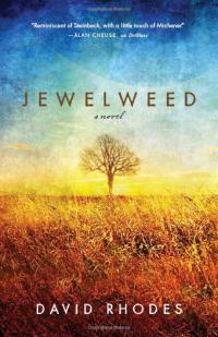 Book cover image for Jewelweed, a novel by David Rhodes