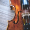 image of a violin