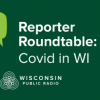 A collection of word bubbles with the caption Reporter Roundtable COVID in Wisconsin